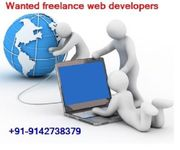 Wanted freelance web developers in Thrissur-+91-9142738379.