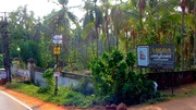 45 cents prime plot with compound wall at Paappinippaara,  Manjeri