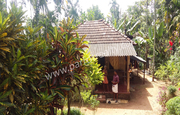 57cent land with small house for sale in Athirattukunnu(kenichira),
