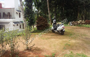 20cent land with  1600sqft house for sale  in cherukattoor.Wayanad.