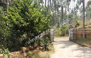 Beautifully designed two story 4bhk houses near  Krishnagiri.