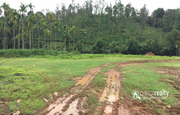 Best price for 40 cent land in valad at 24 lakh