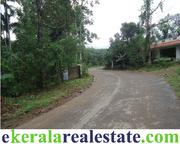 Rubber Plantation for Sale at Vithura Trivandrum