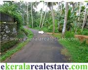 Plots for sale at Pallichal near Pravachambalam