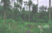 1.30 acre land for sale in Kenichira. wayanad