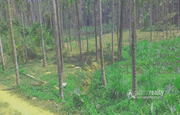 80cent land for sale near Valad at 7lakh.