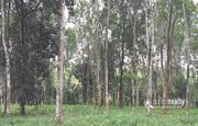 2.50 acre land for sale in koleri.wayanad