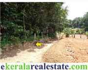 Land sale in Vellarada Trivandrum