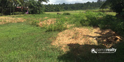 18cent  land for sale in Thirunelli