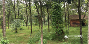 Best price for 1 acre land in valad at 30lakh