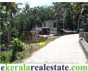 Neyyattinkara Manchavilakom 65 Cents Land Sale