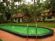 ORCHID Resorts in wayanad,  homestays and accommodations Kerala