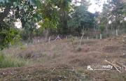 Well demanding 32cent land for sale in Padinjarathara