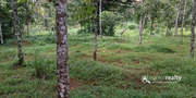 1 acre land with small house for sale in Venmani.