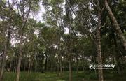 28cent land for sale near Cheengodu.wayanad