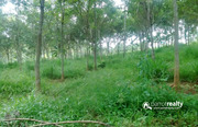 Best price for 50 cent land in Koleri at 11 lakh.