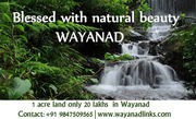 1 acre land only 20 lakhs in Wayanad Wayanadlinks
