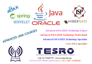 Networking Software & Management Training Institute