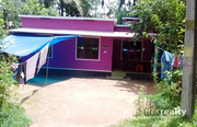 10.75 cent land with Independent House @ 25 lakh in CC (bathery)