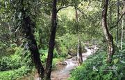 1.20 acre land for sale in Vellamunda @ 27 lakh.