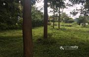 28.50 cent land for sale in pulpally @ 20 lakh.