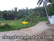 Palode Nedumangad  land for sale