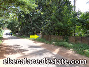 Aruvippuram Neyyattinkara road frontage land for sale