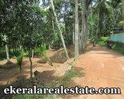 residential land sale at Pravachambalam