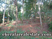 Naruvamoodu Pravachambalam  10 cents land plot for sale
