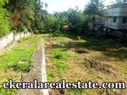 Technopark Kazhakuttom  6 lakhs per cents land for sale