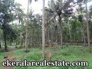 Malayinkeezhu land for sale