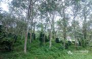 50 cent land @ 15 lakh in Cheeyambam. Wayanad
