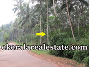 1.15 acre rubber land sale at Kokkottela Aryanad Trivandrum