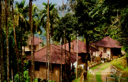 Well 5 acre with 12 Cottages in Meppadi @ 20 Cr. Wayanad