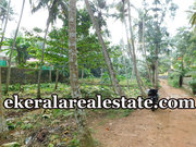 House plot 20cents land sale at Marayamuttom Neyyattinkara