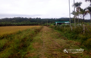 Well demanding 5.75 acre Land for sale in Millumukku @76lakh. Wayanad