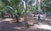 17cent residential land for sale in Munnamkutty, Kayamkulam, Alappuzha