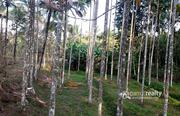 Well Demanded 1 acre land @ 40 lakh in Marakkadavu. Wayanad