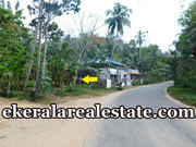 Kallar Ponmudi Trivandrum 17 cents road frontage land for sale