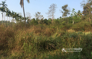 43 cent house plot in pulpally @ 7lakh. Wayanad