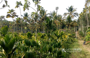 Well demanding 2 acre land in Kenichira @  26lakh.Wayanad