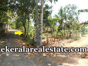 Mangattukadavu Perukavu road froontage 9 cents land for sale