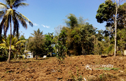 35cent house plot in pulpally @ 13 lakh. Wayanad - Land for sale