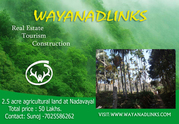 2.5 Acre agricultural land in 50 lakhs at Wayanad