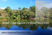 Best of Wayanad tourism packages