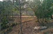 40 cent land in Mananthavady @ 14 lakh.