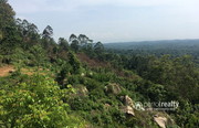 Very demanding 2acre Resort purpose land in Vellamunda @ 44 lakh.