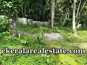 Lorry access land 40 cents sale at Kallikadu Kattakada