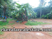 24 cents land plot  sale at Adoor Pathanamthitta