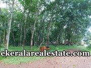 48 cents low budget land sale at Palode Nedumangad